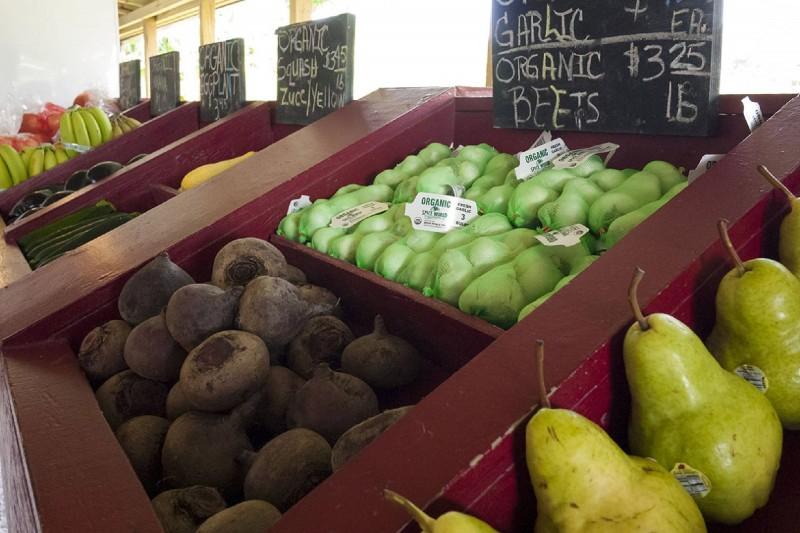 Profitable Organic Market