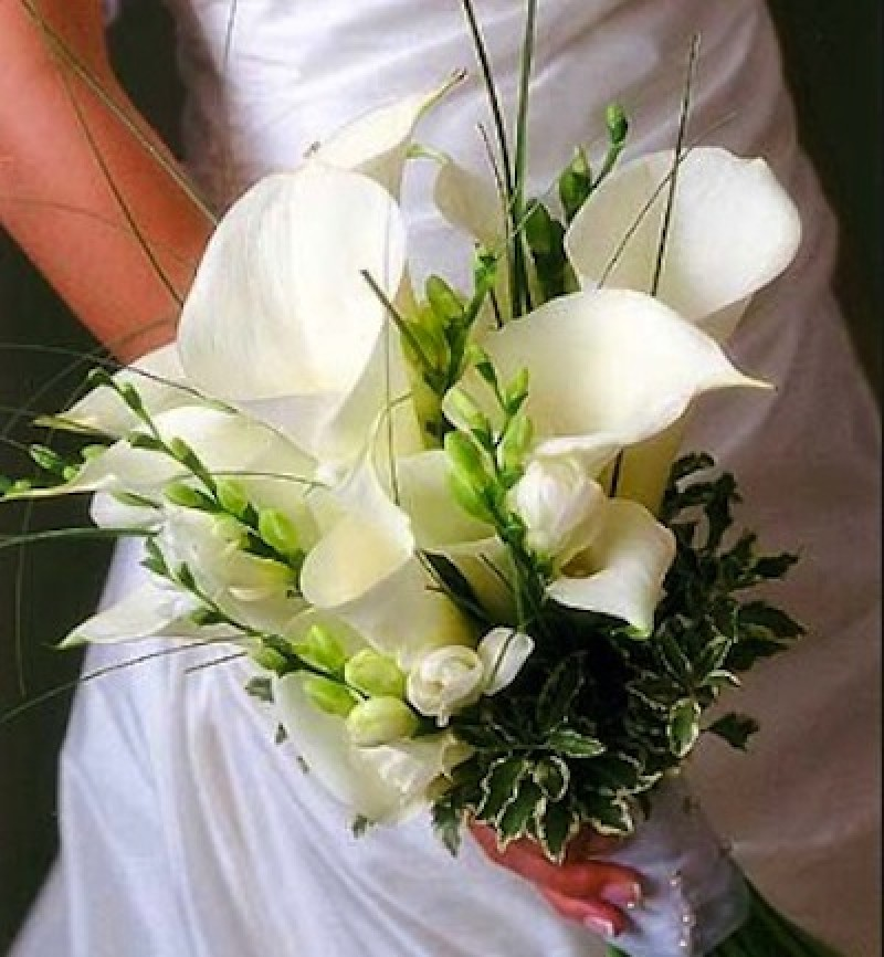 Profitable Bridal, Flowers & Gift Shop
