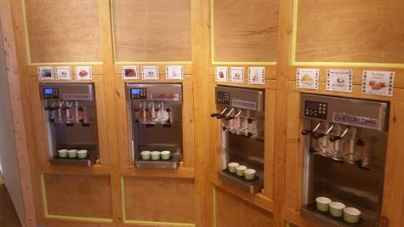 Custom Made Frozen Yogurt Shop $95,000 Tampa Florida