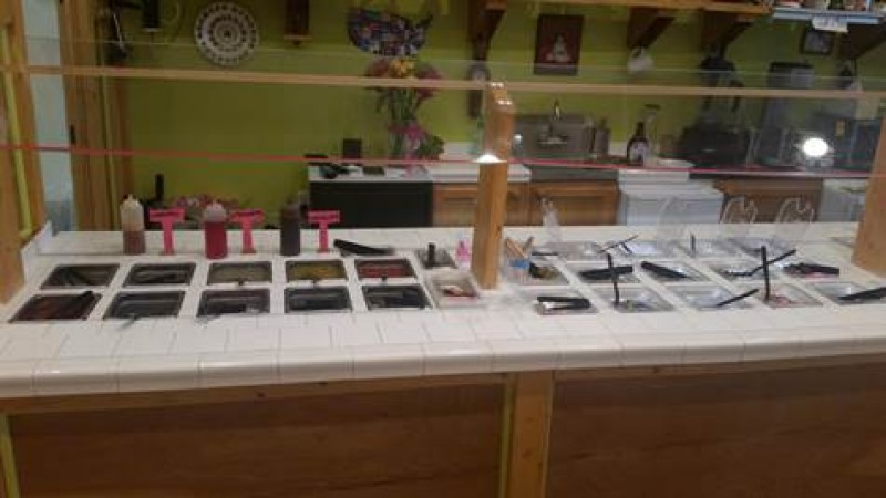 Custom Made Frozen Yogurt Shop $95,000 Tampa Florida
