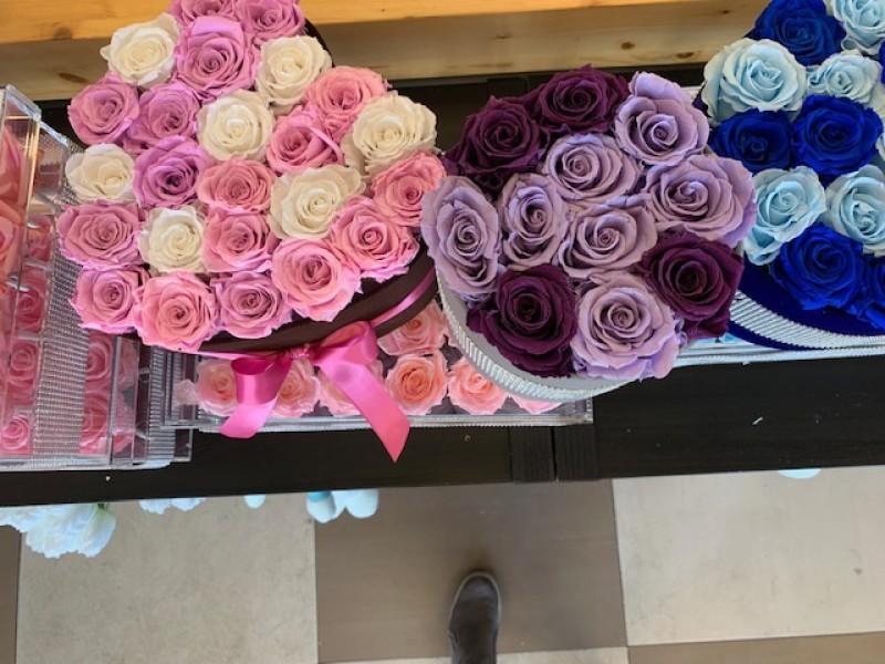 Luxury Flower Shop For Sale,$40,000