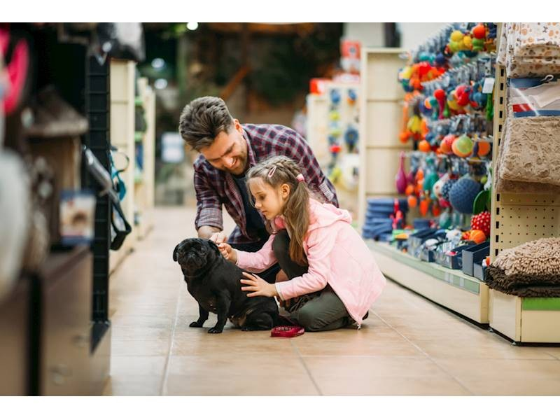 Established & Profitable Pet Store In St. Louis For Sale, $225,000