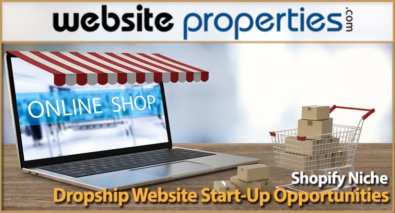 Shopify Niche Dropship Website Start-up Opportunities
