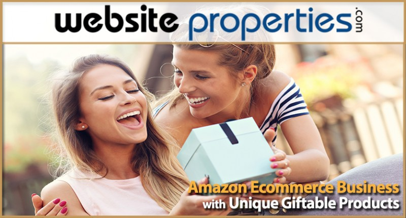 Amazon Ecommerce Business With Unique Giftable Products