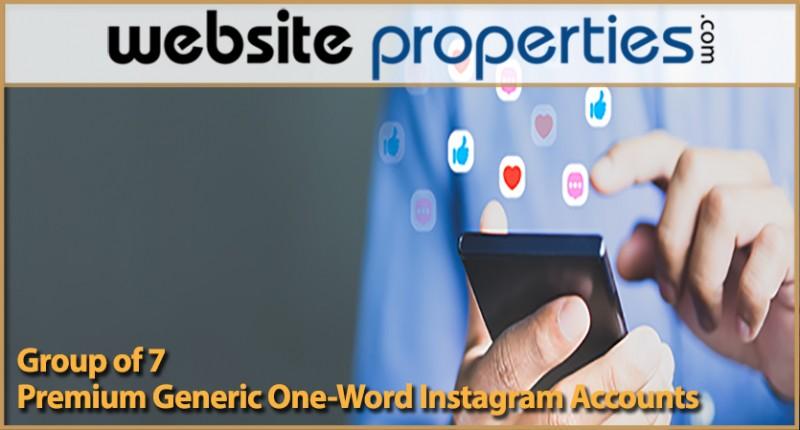 Group Of 7 Premium Generic One-word Instagram Accounts