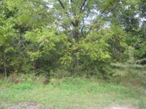 Rare Opportunity To Acquire Two Adjacent 14 Acre Lots For One Large Estate