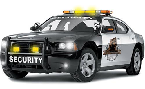 Profitable Charter School & Guard Gate Security Company