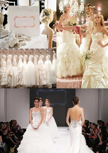 High End Bridal Dresses & Gowns Franchise