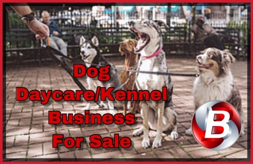 Popular Dog Daycare And Boarding Business In Pennsylvania