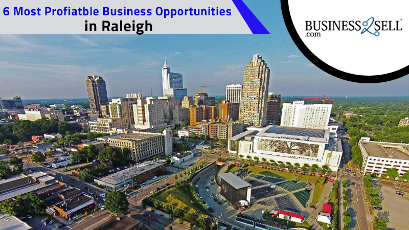 6 Most Profitable Business Opportunities In Raleigh