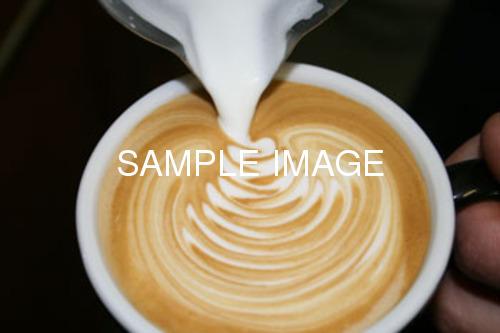 Coffee Shop & Cafe