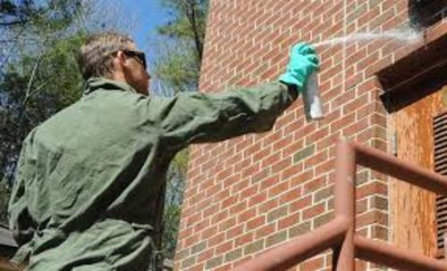 Profitable Pest Control Company